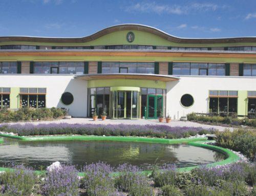 Aromatherapie und zertifizierte Bio- und Naturkosmetik